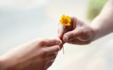 Lernen zu vergeben